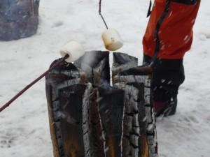 スウェーデントーチで焼きマシュマロ